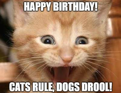 Happy Birthday Cats Rule Dogs Drool
